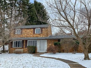 investment property - 115 Morlow Dr, Pittsburgh, PA 15235, Allegheny - main image