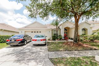 investment property - 18115 Pheasant Walk Dr, Tampa, FL 33647, Hillsborough - main image